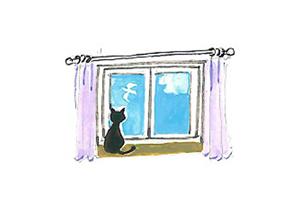 樹脂枠ペアガラス窓 結露しない家